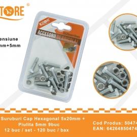 Set Suruburi Cap Hexagonal 5x20 mm + Piulita 5 mm BRI0117
