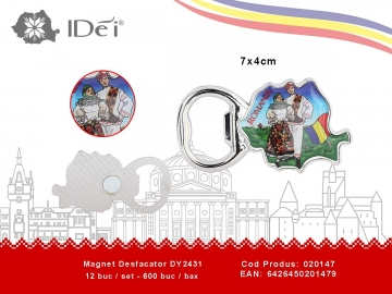 Magnet Desfacator DY2431 020147