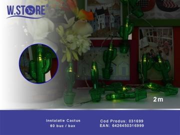 Instalatie Cactus 031699